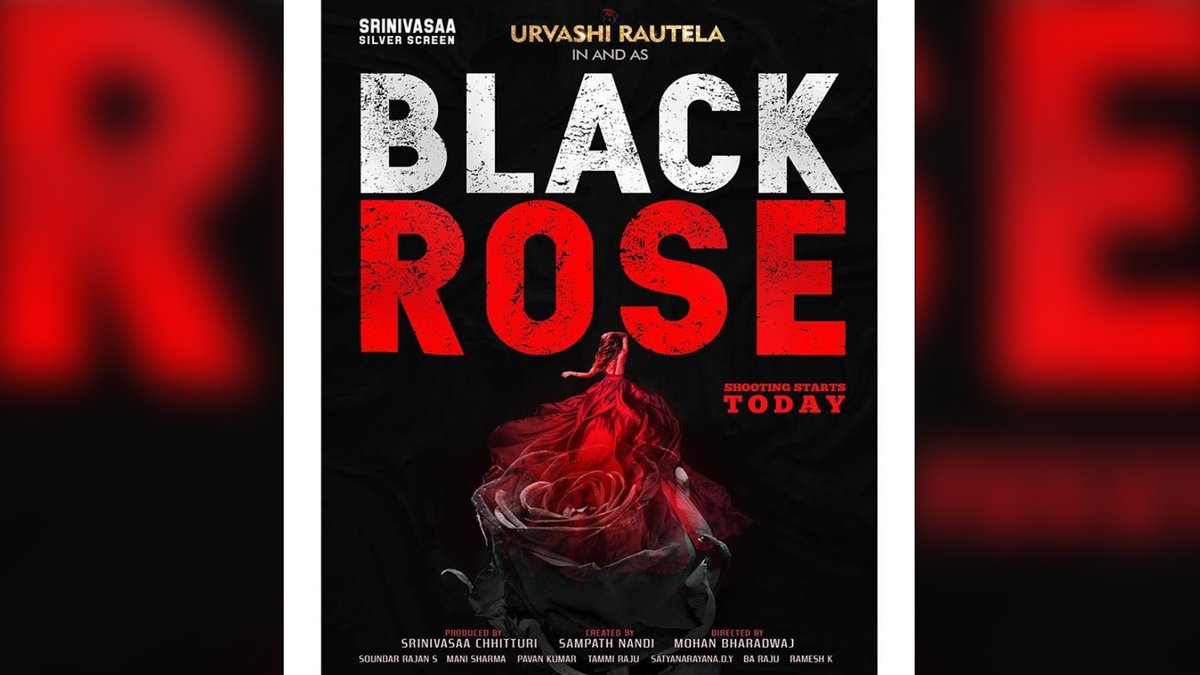 Black Rose Song Lyrics